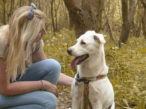 Was ist Tierkommunikation